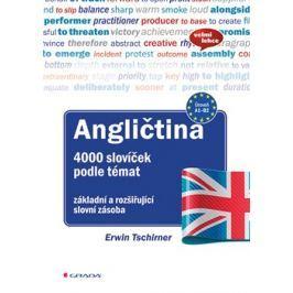 Angličtina 4000 slovíček podle témat - Ervin Tschirner