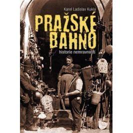 Pražské bahno - Karel Ladislav Kukla