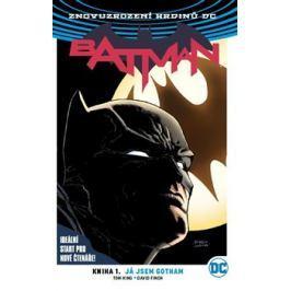 Batman: Já jsem Gotham - Tom King