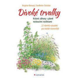 Divoké trvalky - Brigitte Kleinod, Friedhelm Strickler