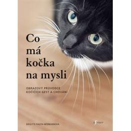 Co má kočka na mysli - Brigitte Rauth–Widmannová