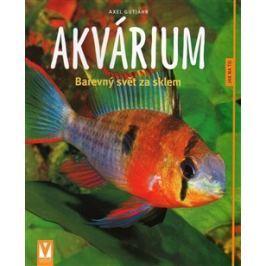 Akvárium - Alex Gutjahr