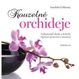 Kouzelné orchideje - Joachim Erfkamp