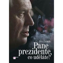Pane prezidente, co uděláte? - Petr Čermák