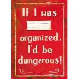 Sešit - If I was organized, I'd be dangerous!
