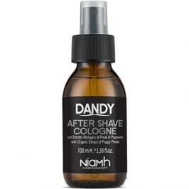 DANDY After Shave Cologne 100 ml