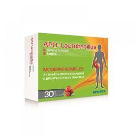 APOTEX APO-Lactobacillus 30 kapslí Doplňky stravy