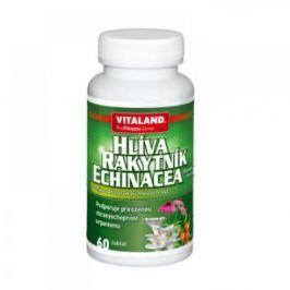 VITALAND Hlíva + echinacea + rakytník 60 tablet