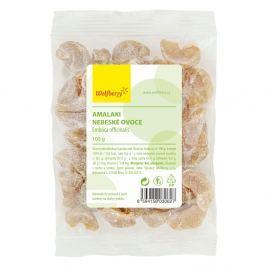 WOLFBERRY Amalaki nebeské ovoce 100 g
