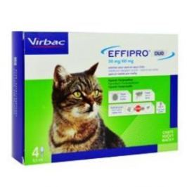 Effipro Duo Cat 50/60 mg spot-on 4 x 0.5 ml