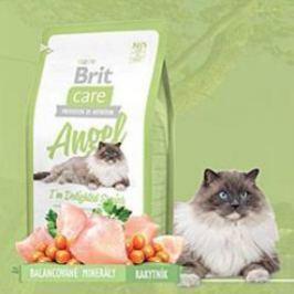 BRIT CARE Cat Angel I´m Delighted Senior 400 g