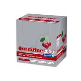 Wellness Food L-Carnitine 2000 500 ml