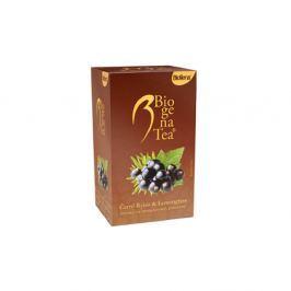 BIOGENA Ovocný čaj Černý rybíz a Lemongrass 20 sáčků