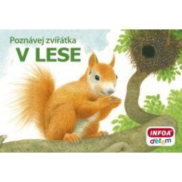 Poznávej zvířátka - V lese