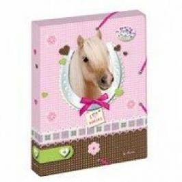 Box na sešity A4/4 cm Pretty Pets - Kůň