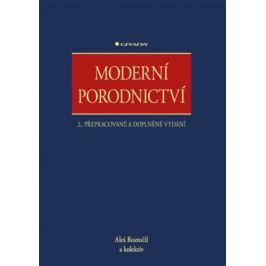 Moderní porodnictví - Aleš Roztočil, kolektiv autorů