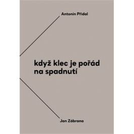 Když klec je pořád na spadnutí - Antonín Přidal, Jan Zábrana, Jiří Opelík