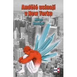 Andělé usínají v New Yorku - Milan Hloušek