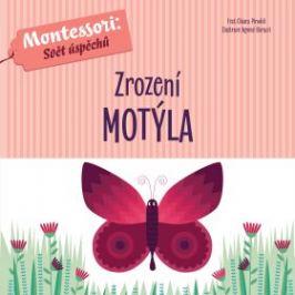 Zrození motýla - Chiara Piroddiová