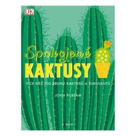 Spokojené kaktusy - John Pilbeam