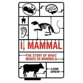 I, Mammal : The Story of What Makes Us Mammals - Drew Liam