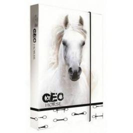 Box na sešity A4 Jumbo GEO WILD kůň