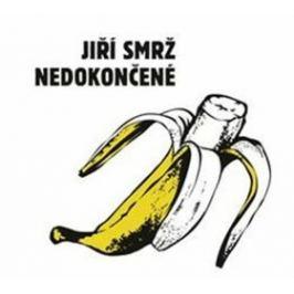 Nedokončené - Jiří Smrž - audiokniha