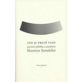 Zen je právě tady - David Chedwick, Shumryu Suzuki - e-kniha