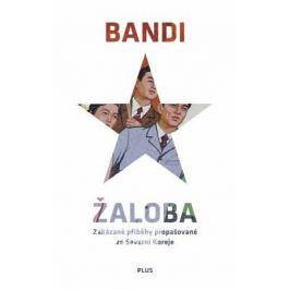 Žaloba - Bandi - e-kniha