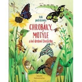 Chrobáky, motýle a iné drobné živočíchy - Emily Bone, Nat Hues
