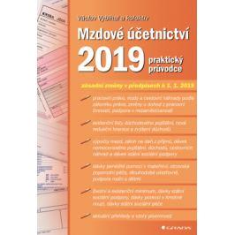 Mzdové účetnictví 2019 - Václav Vybíhal - e-kniha