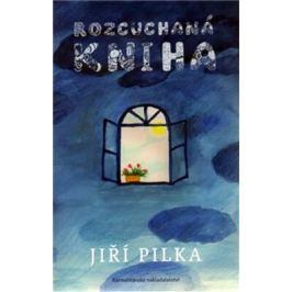 Rozcuchaná kniha - Jiří Pilka