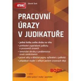 ANAG Pracovní úrazy v judikatuře - Zdeněk Šenk