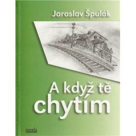 A když tě chytím - Jaroslav Špulák