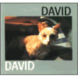 David - Jiří David
