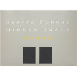 Skryté podoby/ Hidden Image - Jiří David