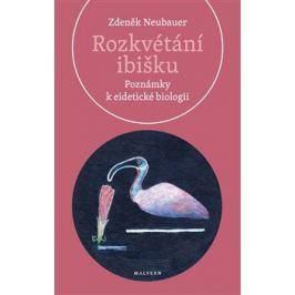 Rozkvétání ibišku - Zdeněk Neubauer