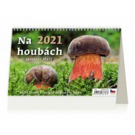 Kalendář 2021 stolní: Na houbách, 226x139 - Jaroslav Malý