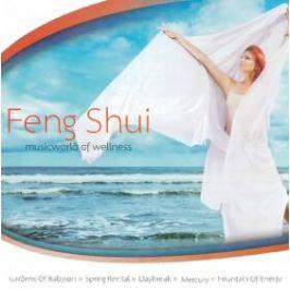 Music World Of Wellness - FENG SHUI - 2CD - audiokniha