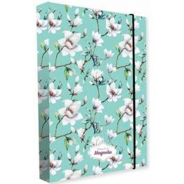 Box na sešity A4 magnolie