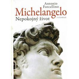 Michelangelo - Forcellino Antonio