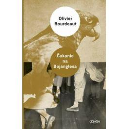 Čakanie na Bojanglesa - Oliver Bourdeaut