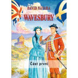 Wavesbury - David Návara - e-kniha