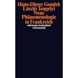 Neue Phänomenologie in Frankreich - Gondek Hans-Dieter, Tengelyi Laszlo