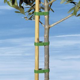 Zahradní páska - suchý zip, 7,5 m