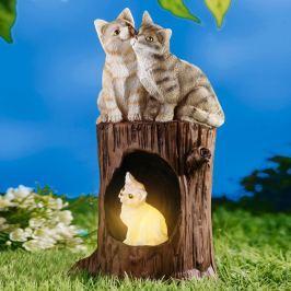Solární kočičí rodinka