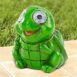 Solární želva Filip