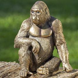 Gorila Ubongo