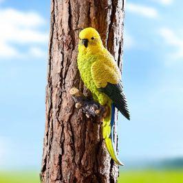 Andulka Benni na strom