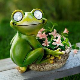 Solární žába s květináčem